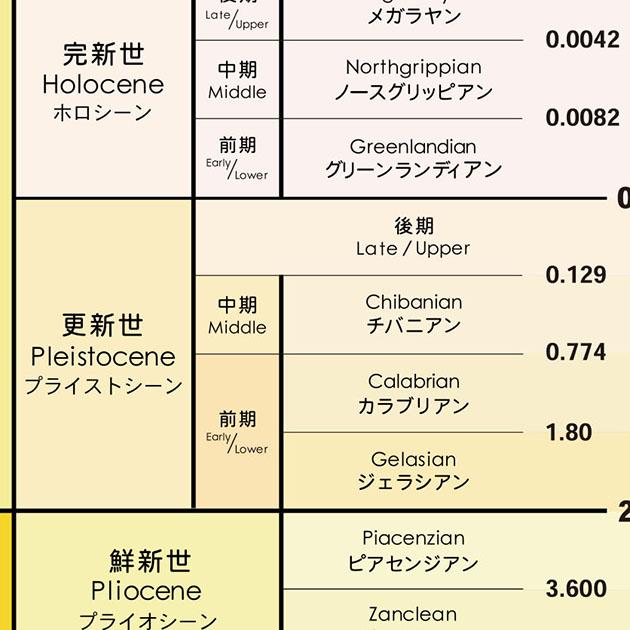 地質年代表クリアファイル【新生代】