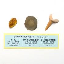 化石発掘クリーニングセット 新生代編
