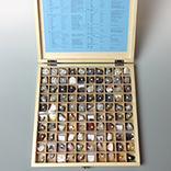 岩石鉱物標本100種