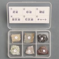 堆積岩6種