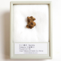 セリコ隕石