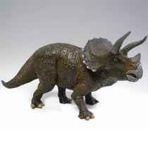 トリケラトプスモデル