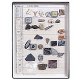 化石標本30種