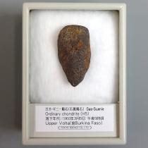 ガオ・ギニー隕石