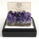 紫水晶(ウルグアイ)